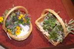 Kräuterbüschel017